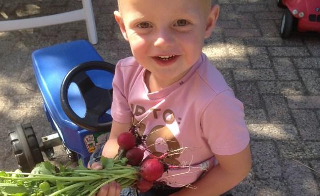 Moestuin Kinderdagverblijf Het Boerderijtje Wijk en Aalburg
