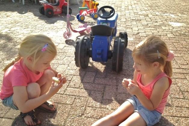 Buitenschoolse opvang Wijk en Aalburg